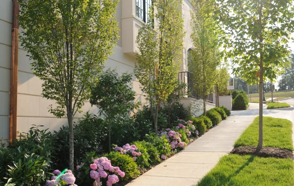 Portfolio Residential Projects Unity Landscape Design Build