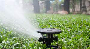 Irrigation – Drip & Turf<br />