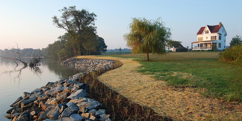 Image result for Shoreline erosion control