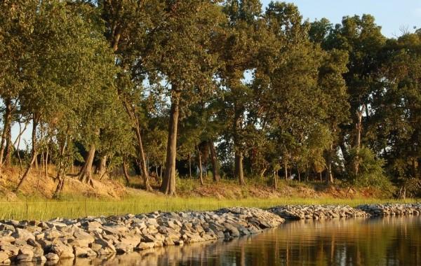 Gallery<br />Shoreline Erosion Control